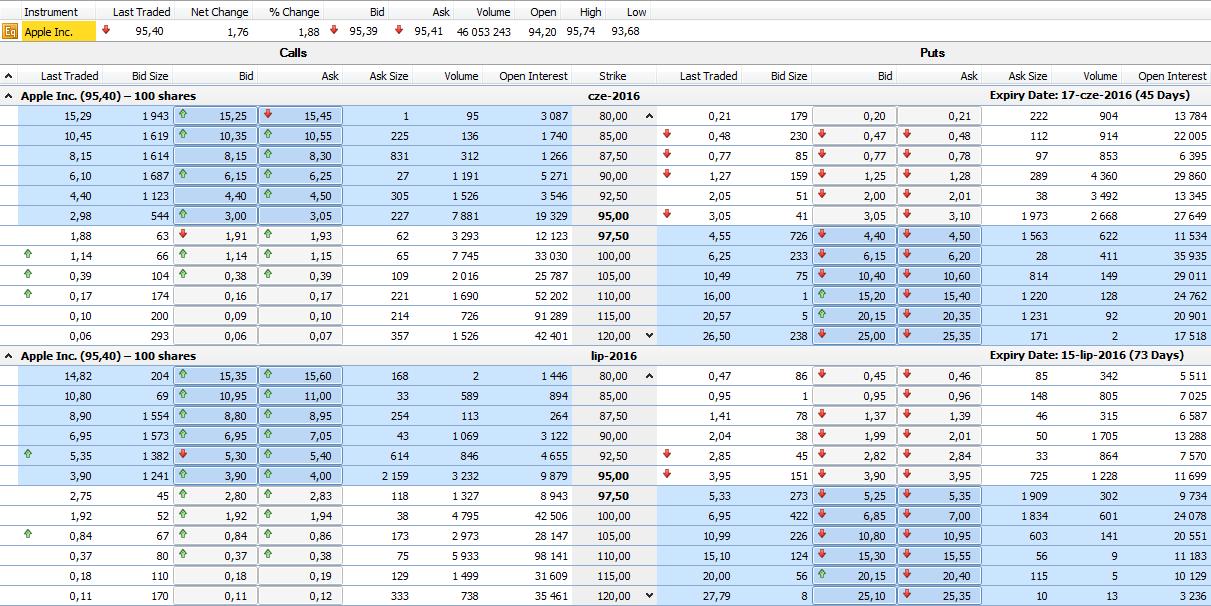 przykład tabeli z cenami opcji