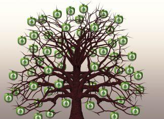 podstawowe zasady inwestowania
