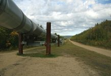 dlaczego USA importują ropę